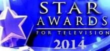 star awards for tv 2014